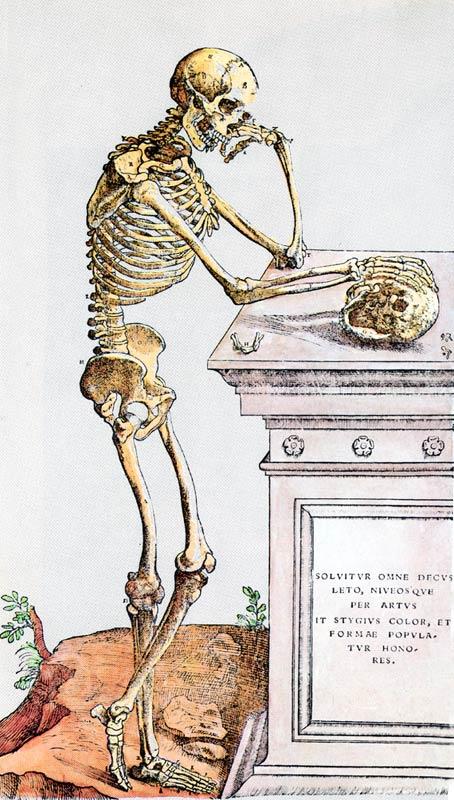 размышляющий скелет